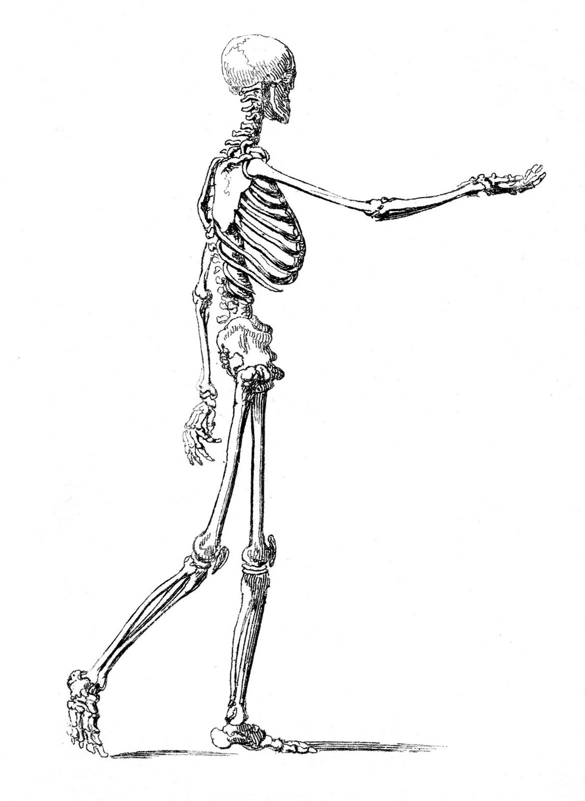 Instant Halloween Art Printable Download