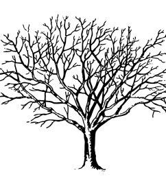 vintage halloween clip art spooky trees [ 1212 x 967 Pixel ]