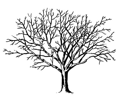 small resolution of vintage halloween clip art spooky trees