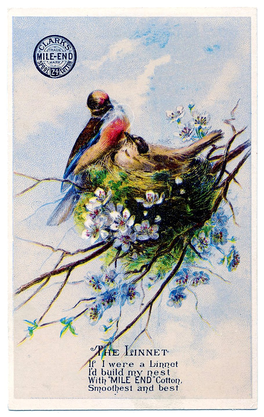 Pretty Birds With Nest Image Thread Trade Card The