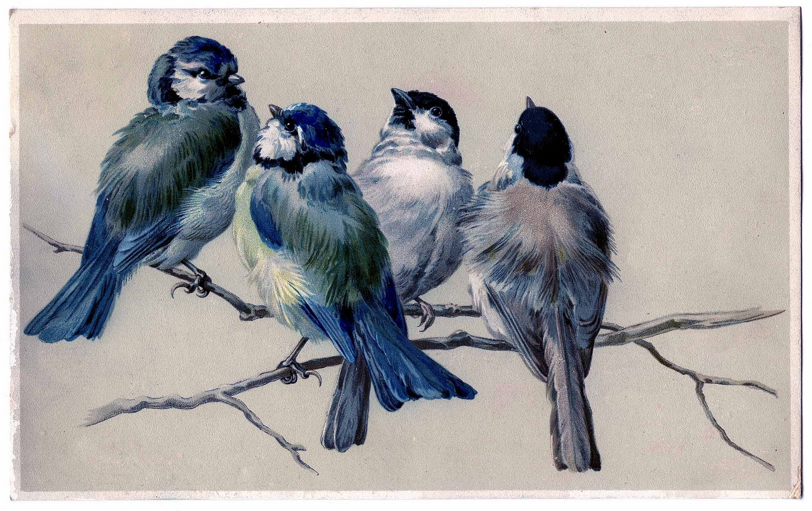 Painting of blue birds