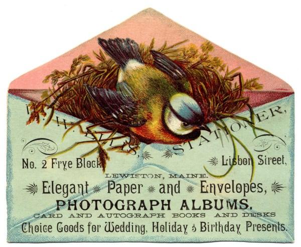 Vintage Clip Art - Sweet Bird With Nest In Envelope