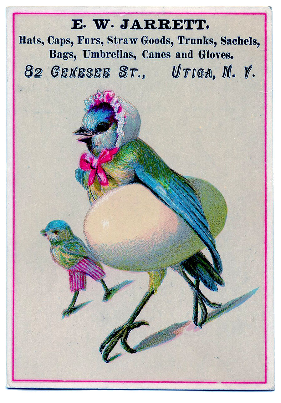 Vintage Advertising Clip Art Funny Bird Mom With Giant