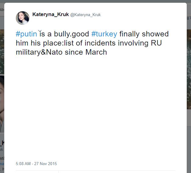 Kateryna Kruk Twitter Turkey Russian plane
