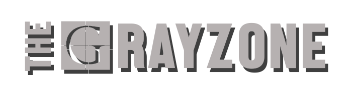 the grayzone logo website