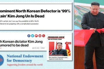 north korea fake news kim dead NED