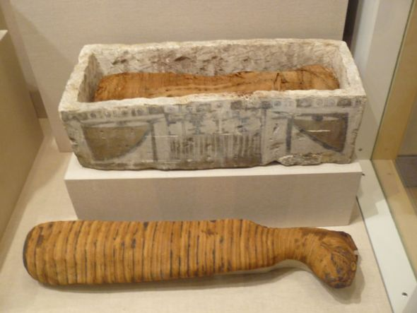 Cat Mummy Sarcophagus 350BC