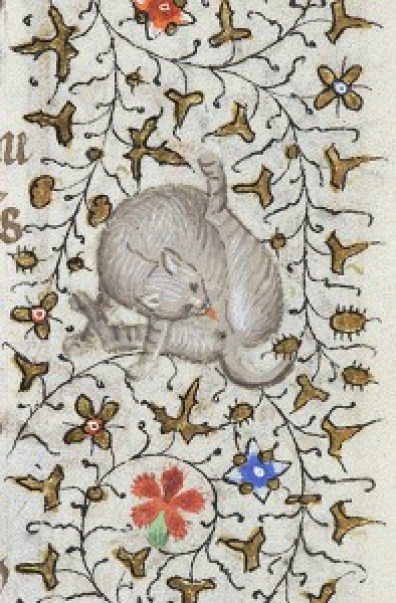 Cat Licks Itself 1420-1425 Hours of Charlotte of Savoy MSM 1004 fol.172r Source: P. Morgan Library, New York, cats in books of hours, medieval cats