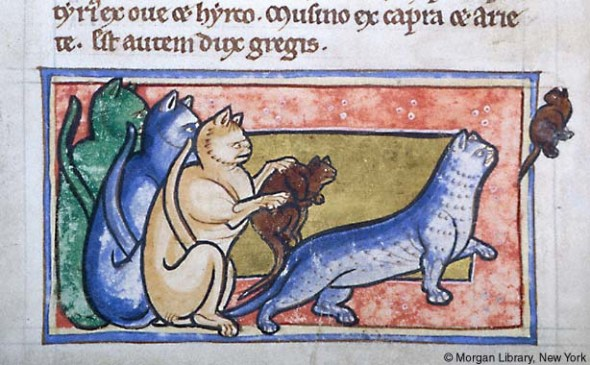 WorkshopBestiaryEngland1185MSM.81fol.46v.MorganLib, cats in psalters and bestiaries