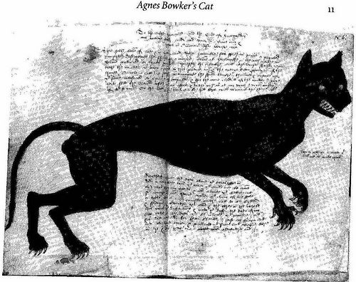 Agnes Bowker's Cat 1569