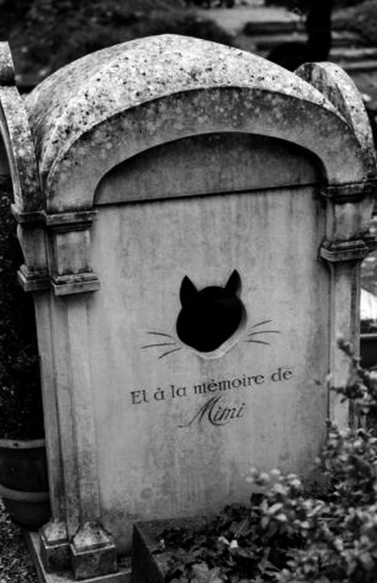 Cat's tombstone Pet cemetery Paris