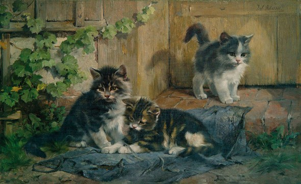 Three Kittens Playing Julius Adam Private Collection