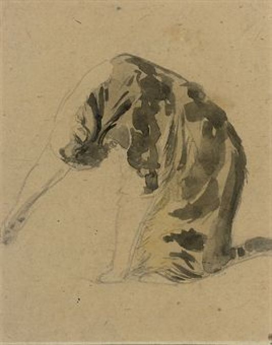 Cat Grooming Itself Gwen John Private Collection