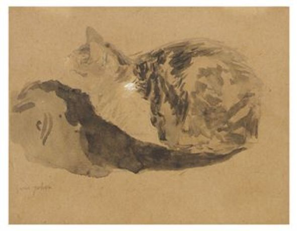 Study of a Cat Gwen John Private Collection