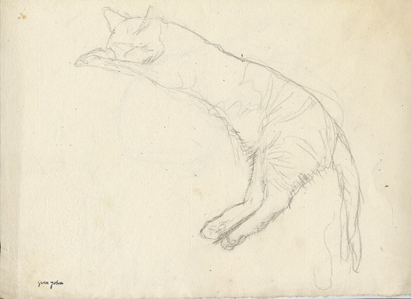 Cat Sleeping Gwen John Sketch Private Collection