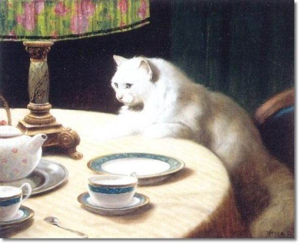 White Persian Cat on a Table Private Collection