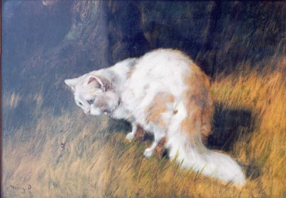 White Cat 1920 Private Collection