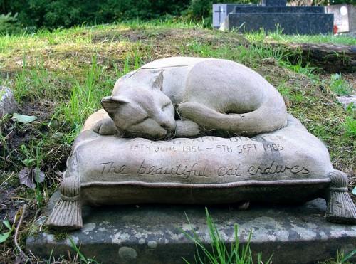 cat poems, cat eulogies, cat epitaphs