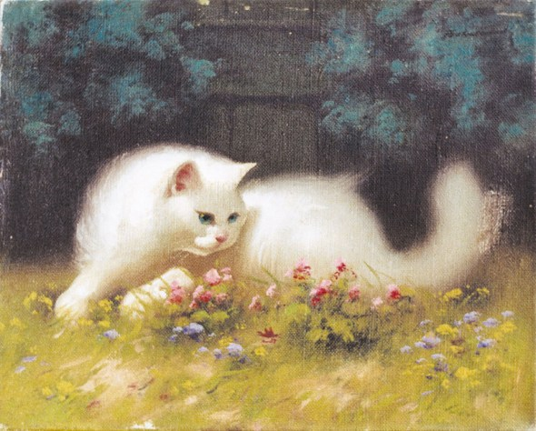 white persian cats in art