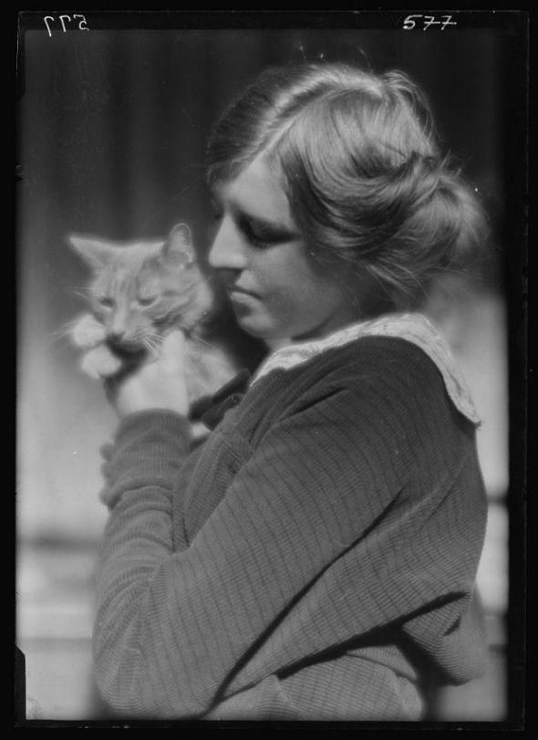 Buzzer the Cat 1910