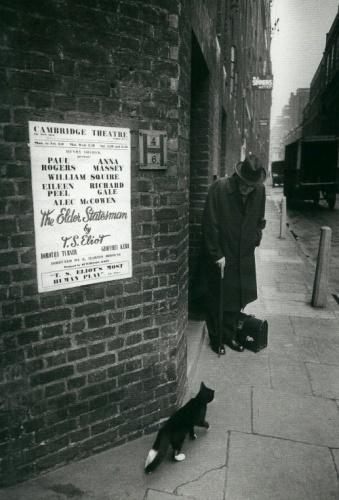 T.S. Eliot's Cats