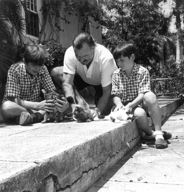Ernest Hemingway with kittens