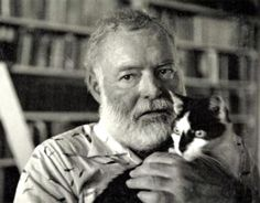 Hemingway cats in literature