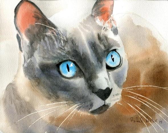 Tonkinese, Rachel Parker, cat artist, cats in art