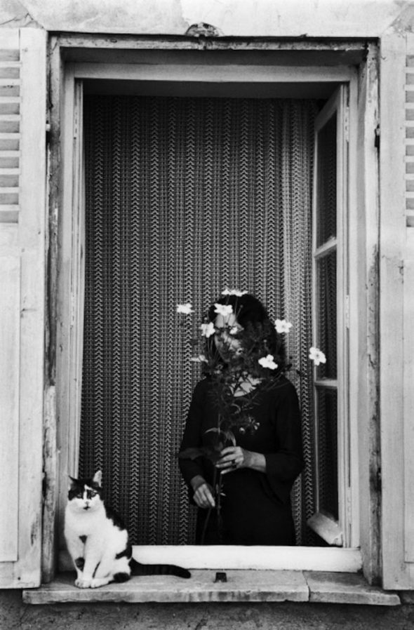 Devant La Fenetre, 1978 Boubat, women and cats