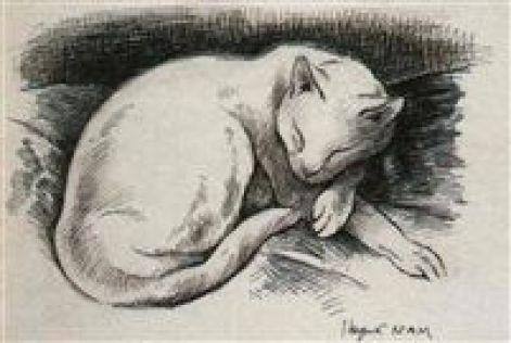 Chatte Blanche, White Cat 1935-1940, Nam, cat drawings, cat sketches