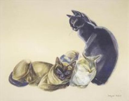 Three Cats, cats in illustrations