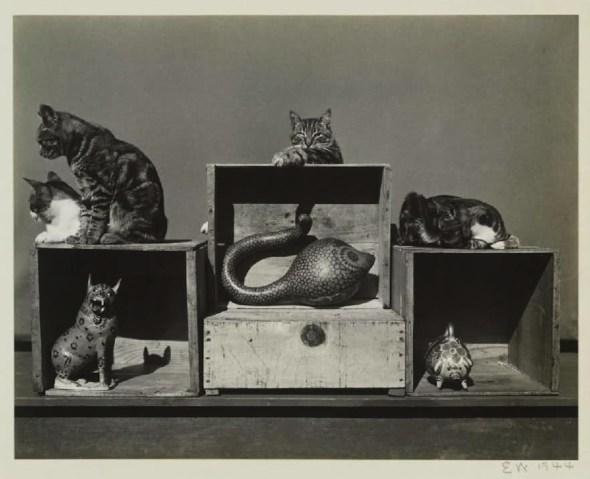 Edward Weston Bodieson, Sidney Roger, Prince Kitty-John, Marco Polo, 1944
