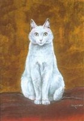 Fastagette chatte blanche, art cats, cats in illustrations