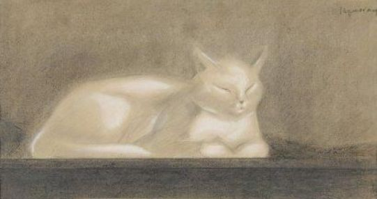 White Sleeping Cat, Nam, art cats