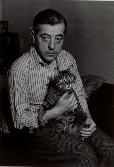 Jacques Prévert and Cat 1948, cat photography