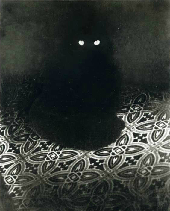 Black Cat 1945, Brassai, cats in photographs