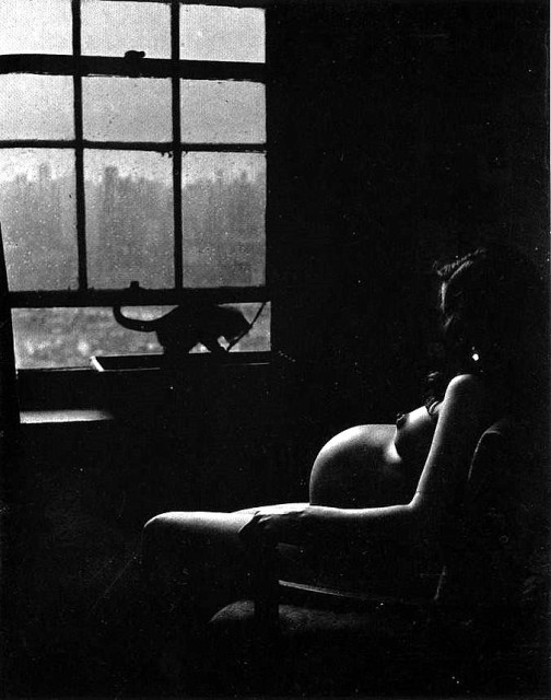 Pregnant Woman with Cat in window, cat photography