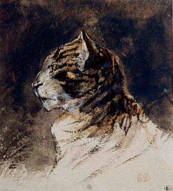 Cat Head E Delacroix
