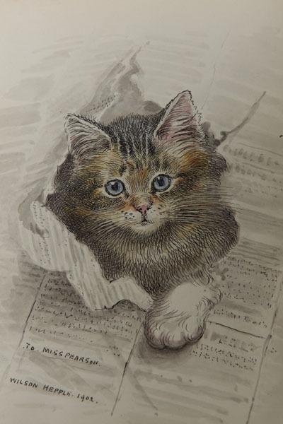 Wilson Hepple - Study of a Cat, 1902