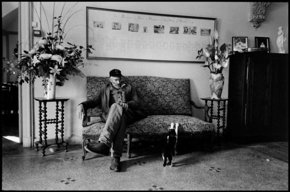 Cat Scratching, Elliott Erwitt NYC1990