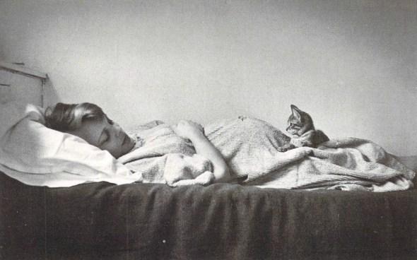 Elliott Erwitt, Woman and Kitten, 1953