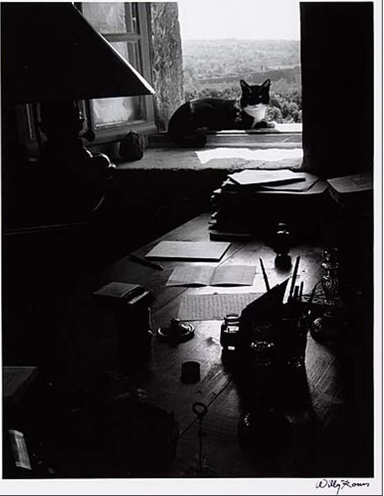 The Writer's Cat, Willy Ronis Le chat de l' ecrivain, 1950