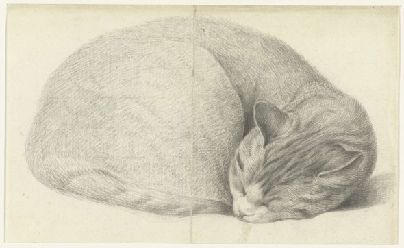 Cat Sleeping Jean Bernard (Amsterdam 1765 - Amsterdam 1833) Rijksmuseum