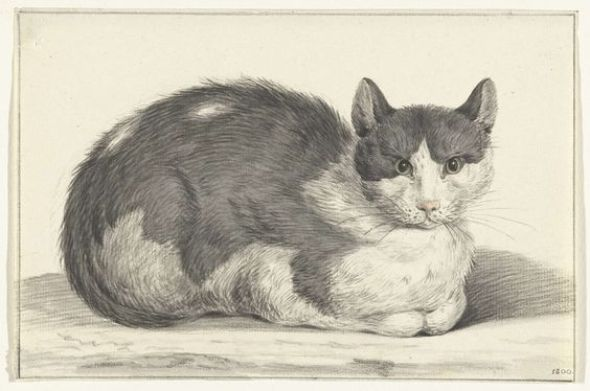 Seated Cat, 1798, Jean Bernard