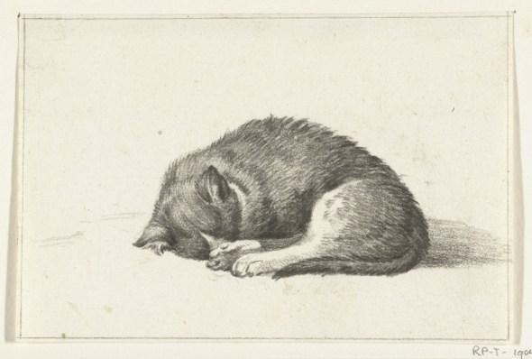 Sleeping Cat, Jean Bernard