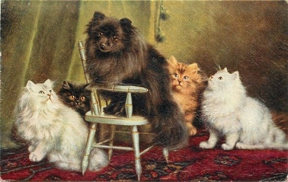 Dog and Cats, Agnes Augusta Talboys