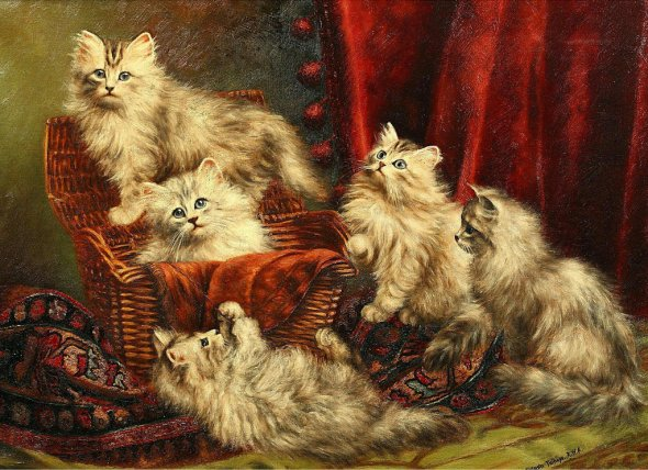 Kittens playing 1908-10, Agnes Augusta Talboys private collection