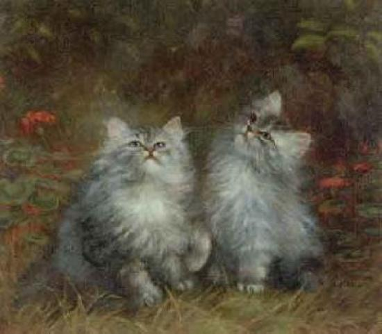 Study of Two Kittens, Agnes Augusta Talboys