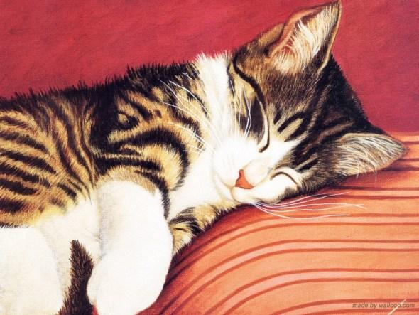 Sleeping Cat, Lowell Herrero