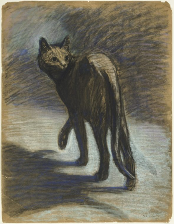 Wary Cat, Theophile Steinlen